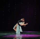 Tenez-vous dans ma magie de bras-Le de danse du monde de l'Autriche de danse-le d'amour-flamant Photographie stock