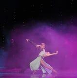 Tenez-vous dans ma magie de bras-Le de danse du monde de l'Autriche de danse-le d'amour-flamant Image stock