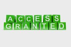 Tenga acceso concedido hecho de cubos Fotografía de archivo