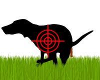Tenga como objetivo los perros crapping Imagen de archivo libre de regalías