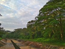 Tengah canalised river. Big wide open monsoon drain surrounded by trees in Tengah forest, Singapore Stock Image