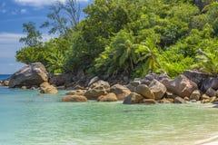 Tenger Anse-strand, Seychellen royalty-vrije stock afbeeldingen
