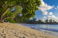 Tenger Anse-strand, Seychellen stock afbeeldingen