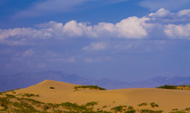 Tenggeli desert and grass china Stock Photo