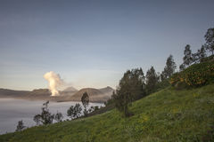Tengger Caldera with Mount Bromo Royalty Free Stock Photos