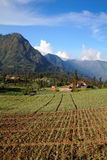 Tengger Village Landscape. Traditional Tengger Village on East Java, on Potraiture format Stock Photo