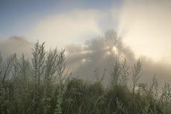 Teniendo en cuenta amanecer Imagen de archivo libre de regalías