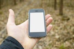 Tenir le mobile dans la forêt Image stock