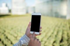 Tenir un téléphone intelligent à la maison verte Photos libres de droits