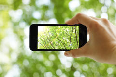 Tenir un téléphone intelligent Images stock