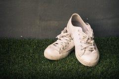 Tenisówka buty na popielatym ściany wciąż życia roczniku Obrazy Stock