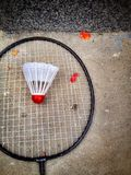 Tenis Royaltyfria Bilder