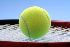 tenis Zdjęcie Stock