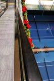 tenis Fotografía de archivo libre de regalías