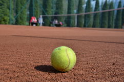Tenis ball. Tennis ball on the playing field Royalty Free Stock Photos