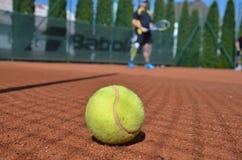 Tenis boll Fotografering för Bildbyråer