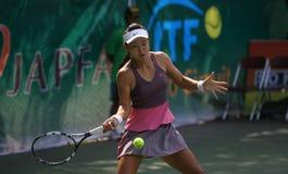 Tenis Stock Image