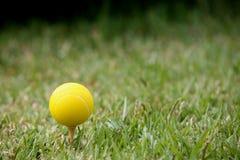 tenis piłkę Fotografia Stock