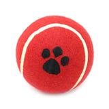 Tenis rojo de la bola para los perros de animales domésticos Foto de archivo