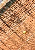 Tenis sieć Zdjęcia Stock