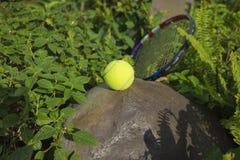 Tenisowa piłka na górze skały Pojęcie zielony i zdrowy Obrazy Stock