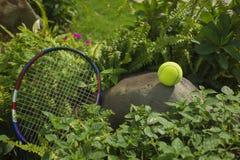 Tenisowa piłka na górze skały Pojęcie zielony i zdrowy Obraz Royalty Free