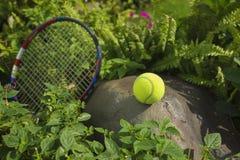Tenisowa piłka na górze skały Pojęcie zielony i zdrowy Fotografia Stock