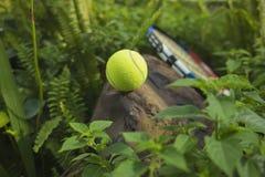 Tenisowa piłka na górze skały Pojęcie zielony i zdrowy Zdjęcie Royalty Free