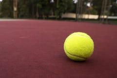 Tenisowa piłka na zieleń sądzie zdjęcie royalty free