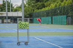 Tenisowe piłki w koszu Zdjęcie Stock