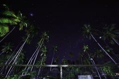 Tenisowy sąd pod palmami i gwiaździstym niebem Obraz Stock