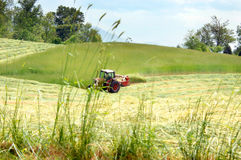 Tennessee Agriculture Stock Photography