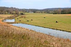 Tennessee-Bauernhof Stockfoto