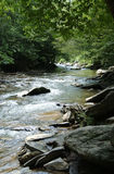 Tennessee Creek. This is a creek along the road in Tennessee royalty free stock photography