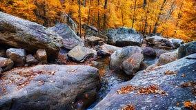 Free Tennessee Creek Stock Photo - 97857250