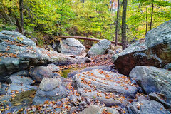 Tennessee Creek. A creek near Signal Mountain. Chattanooga, Tennessee is located in the eastern part of the state on the Cumberland Plateau Stock Photo