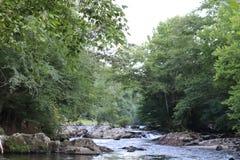 Tennessee Dymiące góry W lecie zdjęcie royalty free