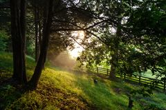 Tennessee Morning rural Images libres de droits