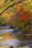 Smoky Mountain creek on an autumn day Stock Photography