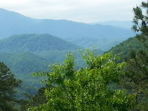 Tennessee mountains Royalty Free Stock Photography