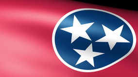 Tennessee State Flag Waving. Video footage stock video