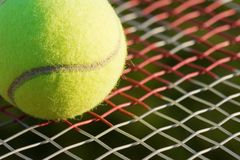 Tennis Royalty Free Stock Photo