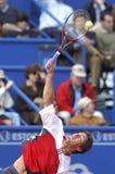 tennis royaltyfri fotografi