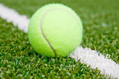 Tennis ball. On a green grass with a white marking royalty free stock photos