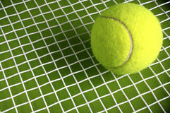 Tennis ball. Tennis ball on a green background Royalty Free Stock Images