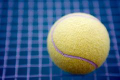 Tennis ball. Of yellow color against a grid and a dark blue background Royalty Free Stock Photo