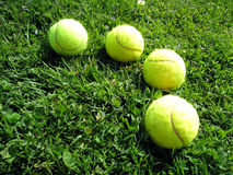 Tennis ball 5. Tennis balls in the meadow Royalty Free Stock Photo