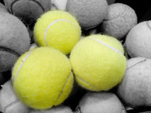 Free Tennis Ball Stock Photography - 5552642