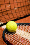 Tennis ball. On the court Stock Photography