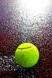 Tennis ball with backlight Stock Photo